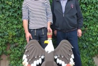 Ein Vogelbauer kommt – Ein Vogelbauer geht